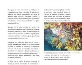 Estudos de Impacto Ambiental - 04